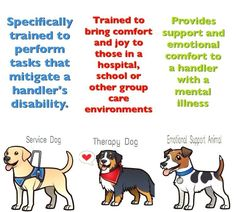 """gooddogautismcompanions: """" Ever wonder the difference between a service dog, therapy dog & an emotional support dog? This graphic explains. Good Dog Autism Companions are service dogs that help mediate the disability of autism. Service Dog Training, Training Your Dog, Training Tips, Psychiatric Service Dog, Emotional Support Animal, Emotional Support Dog Training, Dog Anxiety, Therapy Dogs, Working Dogs"""