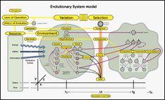 Evrimsel Sistem Modeli (Evolutionary System Model) #SistemMühendisliği #SystemsEngineering