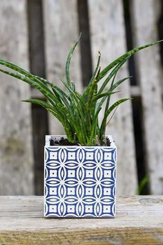 Use left over tiles or samples to make a gorgeous blue Boho Moroccan Style planter in under 5 minutes. #moroccantile #planter