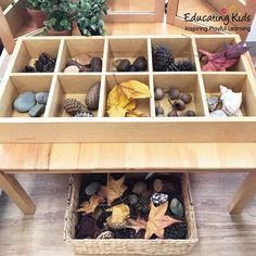 Sorting through nature in our Sand & Sorting Tray. . . . . . #sorting #tray #nature #autumn #leaves #timber #educatingkids #inspiring #playful #learning #investigate #education #educate #kindergarten #preschool #toddlers #playbasedlearning #children #child #childcare #earlychildhood #earlyyears #earlyyearseducation #teaching Kids Inspire, Play To Learn, Early Learning, Pre School, Childcare, Preschool Activities, Early Childhood, Sorting, Kindergarten