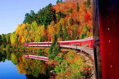 Agawa Canyon train takes visitors through brilliant fall foliage Train Tour, By Train, Train Times, America And Canada, Train Travel, Landscape Photos, Garden Bridge, Ontario, Places Ive Been