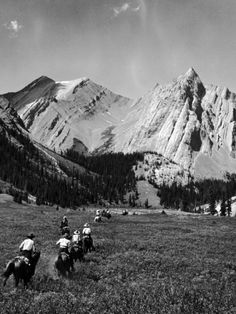 Group of Vacationers Riding Horseback Along a Trail in the Canadian Rockies