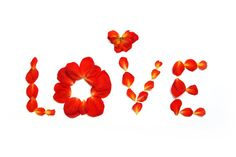Love blank cards - Card Set - Red begonia petals- Origami envelopes