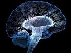 Para tratar a pacientes con trastorno bipolar siempre nos centramos en fármacos, sin pararnos a observar que existen terapias subyacentes que, combinadas con estos fármacos, podrían ser mucho más efectivos los resultados.