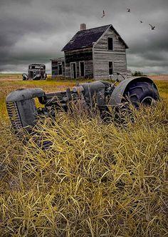 Pocket : 16 Elegant Pictures of Tractors