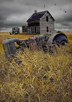 Pocket : 16 Elegant Pictures of Tractors
