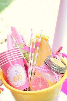 Lemonade Stand Kit