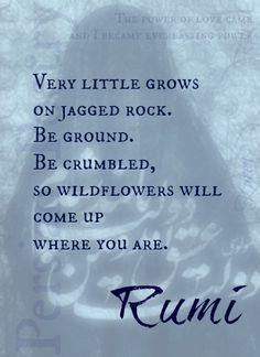 """Very little grows on jagged rock. Be ground. Be crumbled, so wildflowers will come up where you are.""  Rumi"