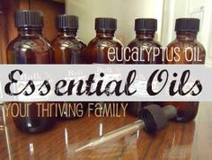 Your Thriving Family: Eucalyptus Essential Oil