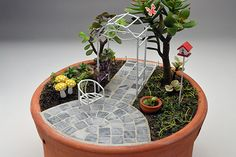 Mini Jardim - Veja mais em https://minijardimeafins.wordpress.com