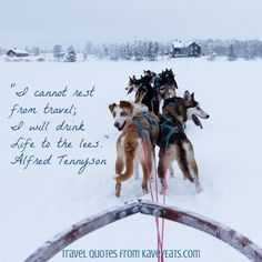 I cannot rest from travel;I will drink life to the lees. - Alfred Tennyson (image taken in Arctic Sweden)