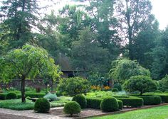 Boxwood, yews provide any number of shapes, uses in landscape | Home | Kentucky.com