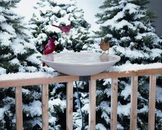 Special Offers - Allied Precision 20 in. EZ Deck Tilt and Clean Heated Bird Bath - In stock & Free Shipping. You can save more money! Check It (August 27 2016 at 11:14AM) >> http://birdhouseusa.net/allied-precision-20-in-ez-deck-tilt-and-clean-heated-bird-bath/
