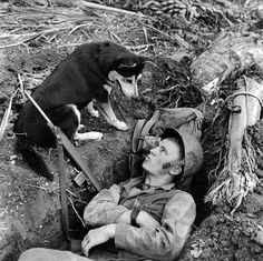 """""""How about moving over, Bud?"""" - A scouting dog and a US Marine who is comfortably occupying a foxhole in Guam, during World War II, 1944 - [2165x2160]"""