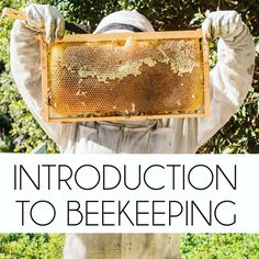 Exciting news!  An online version of the popular Intro to Beekeeping class is now available to stream! If you're thinking about starting a backyard beehive or are just curious about what's involved…
