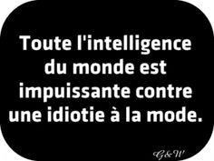 Toute l'intelligence du monde est impuissante contre une idiotie à la mode.