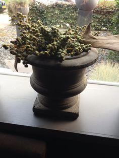 Brynxz pot barocque earth met verse dadeltakken. Te koop bij Gnus wonen