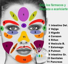 Facial Acupressure points to Improve Organ Function and Promote Lymphatic Drainage. I firmly support massage, acupressure and acupuncture as alternative. Gesicht Mapping, Health And Beauty, Health And Wellness, Health Fitness, Massage Facial, Facial Yoga, Hand Massage, Facial Muscles, Massage Room