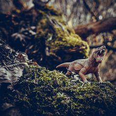 #dinosaur #dinosaurs #jurassicpark #jurassicworld #dino #trex #art #paleontology #jurassic #dinosaursofinstagram #prehistoric #tyrannosaurusrex #jurassicworldfallenkingdom #velociraptor #paleoart #dinosaurios #fossil #jurassicworldevolution #nature #raptor #animals #tyrannosaurus #drawing #cretaceous #triceratops #toys #toyphotography #spinosaurus #reptiles #bhfyp Dino Trex, Jurassic World Fallen Kingdom, Spinosaurus, Tyrannosaurus Rex, Toys Photography, Jurassic Park, Prehistoric, Reptiles, Bald Eagle