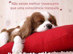Não existe melhor travesseiro que uma consciência tranquila.