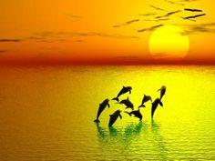 Yellow Sunset Background Photo by druebeall | Photobucket