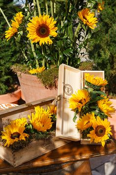 Sunflowers are arranged in wooden wine boxes, a fabulous way to re-use for a Tuscan wedding.