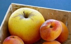 Pomme et abricots
