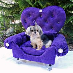 Learn how to make an upholstered princess doggie bed from an old drawer. Your pup will love it!
