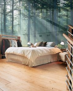 ♂ Glass Wall Bedroom, Sweden nature lighting