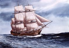 Mayflower ship at sea painting Wilderness Tattoo, Hms Bounty, Ship Paintings, East Indies, Nautical Art, Ship Art, Tall Ships, Sailing Ships, Amazing Art