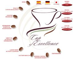 Cup of Excellence - Award Winning Gourmet Coffee