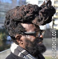 Makes people with dreads look bad Crazy Hair Days, Bad Hair Day, Pictures Of The Week, Wild Hair, Crazy People, Strange People, Stupid People, Funny People, Hair