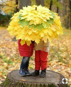 Autumn Autumn is inevitable! Fall Crafts, Diy And Crafts, Crafts For Kids, Autumn Photography, Children Photography, Garden Art, Garden Design, Floral Umbrellas, Patio Umbrellas