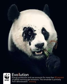 Toxic Animal Ads The WWF Evollution Campaign Looks to Send a Clear Message