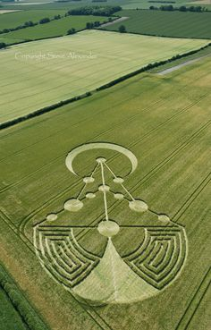 Badbury Rings, Near Wimborne Minster, Dorset | 17th June 2014 | Barley 29  http://www.temporarytemples.co.uk/imagelibrary/