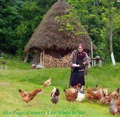 Viața la tara .!!!! - Doina Hundorfean - Google+ Country Life, Nature Photography, Rustic, Landscapes, Gardening, Sign, Education, Handmade, Campinas