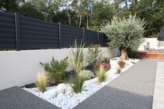 white stone gravel with ornamental grasses | adamchristopherdesign.co.uk
