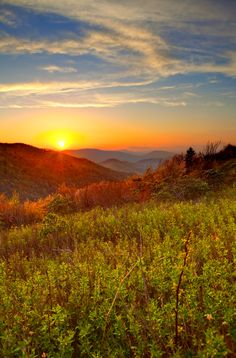We can't think of a more beautiful view than this in the Smoky Mountains.