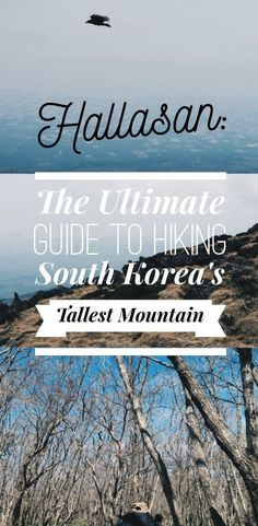 Climbing Hallasan Mountain: The Ultimate Guide to Hiking South Korea's Tallest Mountain on Jeju Island, South Korea. The essential guide for climbing the tallest mountain of South Korea, Jeju Island's Hallasan Mountain, including seasonal essentials and must-know tips! Climbing Mount Hallasan is one of the best things to do in Jeju, and certainly one of the best things to do in South Korea!