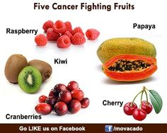 Which of the fruits below do you love most? Share with us! Veggies are Healthy @ http://www.facebook.com/movacado