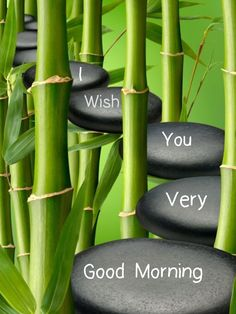 Good Morning Greetings Morning Prayer Quotes, Happy Morning Quotes, Good Morning Prayer, Morning Greetings Quotes, Morning Blessings, Good Morning Messages, Good Morning Wishes, Good Morning Wednesday, Good Morning Picture