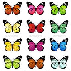 Buy Set of Colorful Vector Butterflies by nikiteev on GraphicRiver. set of colorful vector butterflies Purple Butterfly Tattoo, Butterfly Table, Butterfly Nail Art, Butterfly Crafts, Dot Art Painting, Fabric Painting, Indie Room, Murals For Kids, Butterfly Template