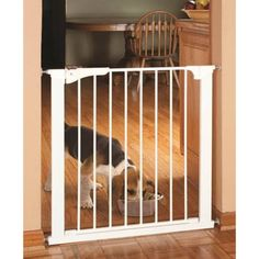 Keep your pets corralled with the Command Pet Expandable Pressure Mounted Gate . This expandable pet gate is pressure mounted, which makes it easy to. Freestanding Dog Gate, Origami White, Morkie Puppies, Pet Gate, Dog Gates, Thing 1, Dog Fence, White Dogs, Dog Houses