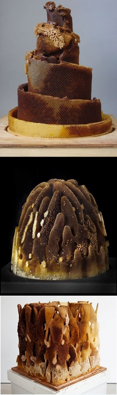 Hilary Berseth. Programmed Hive #7, 2008. sculpture made in collaboration with bees. honeybee comb on board mounted on hive super, wood, polystyrene foam, wire, metal
