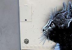 chat illimité ghent
