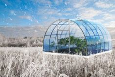 One blue round 3d greenhouse with foliage in winter