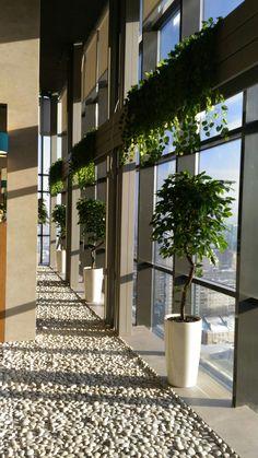 Wellness&spa Balance. Зона релакса и джакузи. Декорирование искусственными растениями. Деревья в кашпо Lechuza Rondo. Реализация студии Iren Lakusta