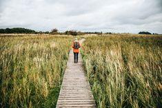 Urlaub an der Ostsee: unsere Tipps für Fischland-Darß-Zingst - Sommertage Future Travel, Railroad Tracks, Wanderlust, Country Roads, Roadtrip, Blog, Summer Days, Blogging, Train Tracks