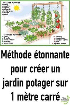 Amazing method to create a vegetable garden on 1 square meter - - Amazing method to create a Veg Garden, Garden Planters, Garden Art, Organic Gardening, Gardening Tips, Gemüseanbau In Kübeln, Potager Bio, Container Gardening Vegetables, Vegetable Gardening