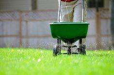 garden care schedule Lawn Care Calendar for Warm-Season Lawns Lawn Care Schedule, Lawn Care Tips, Care Calendar, Bermuda Grass, Lawn Fertilizer, Lush Lawn, Lawn Dethatcher, Lawn Sprinklers, Lawn Maintenance